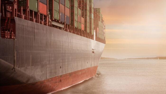 WordPress et la gestion des outils d'import / export