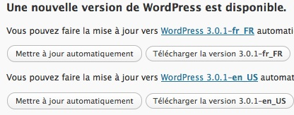 Capture d'écran - WordPress update
