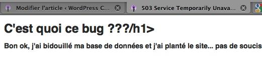 Capture d'écran - db-error.php
