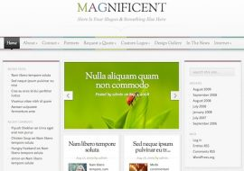 Magnificent, un thème WordPress premium sublime