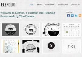 Elefolio, un thème premium portfolio pour WordPress by WooThemes