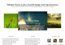 Modest, un thème premium pour WordPress de grande classe