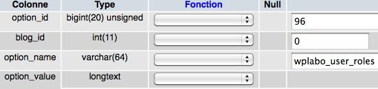 Capture d'écran - Modification de la valeur wp_user_roles