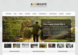 Aggregate, un thème complet par Elegant Themes