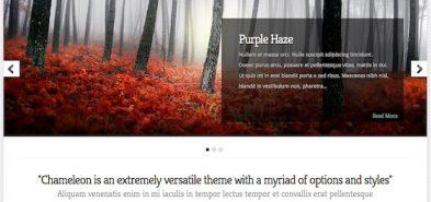 Chameleon, un thème WordPress premium personnalisable à l'infini