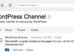 Google+ Pages & WordPress