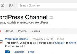 Google+ Pages & WordPress