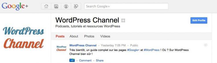 google-plus-page-wpchannel-0