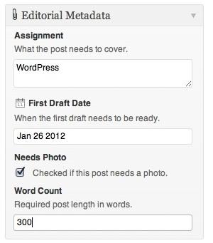 Capture d'écran - Meta data personnalisées sous WordPress