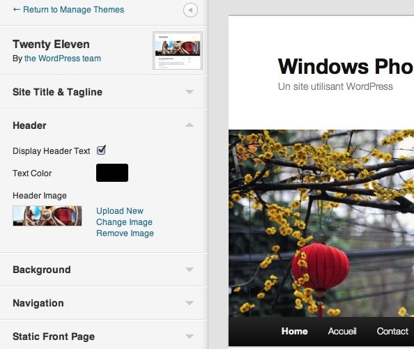 Capture d'écran - Personnalisation de thème sous WordPress 3.4