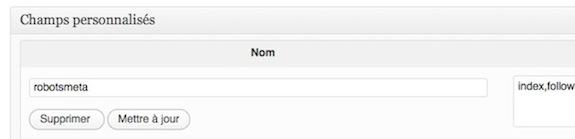 Capture d'écran - Exemple de champs personnalisé sous WordPress