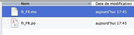 Capture d'écran - Présence d'un fichier .mo / .po