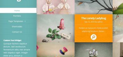 Origin, un thème premium portfolio de chez Elegant Themes