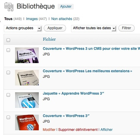 Capture d'écran - Modification d'un fichier image sous WordPress