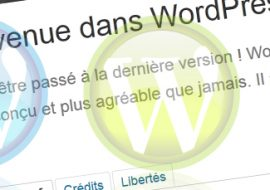 Activer le gestionnaire de liens sous WordPress 3.5