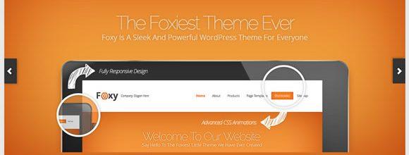 elegant-themes-foxy-1