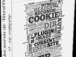 Tous les secrets de WordPress #1 – wp-config.php par Julio Potier (BoiteAWeb)