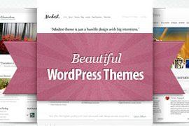 [Résultats] 3 licences développeurs Elegant Themes à GAGNER sur WordPress Channel