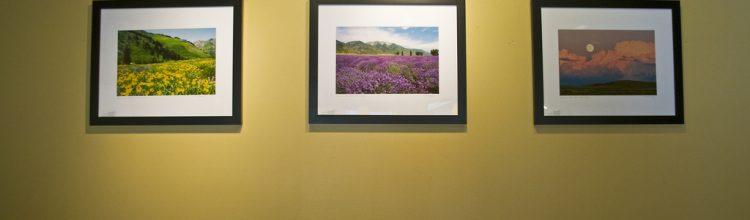 Tom Kelly Photos at Starbucks Gallery