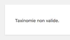 wordpress-taxonomie-invalide