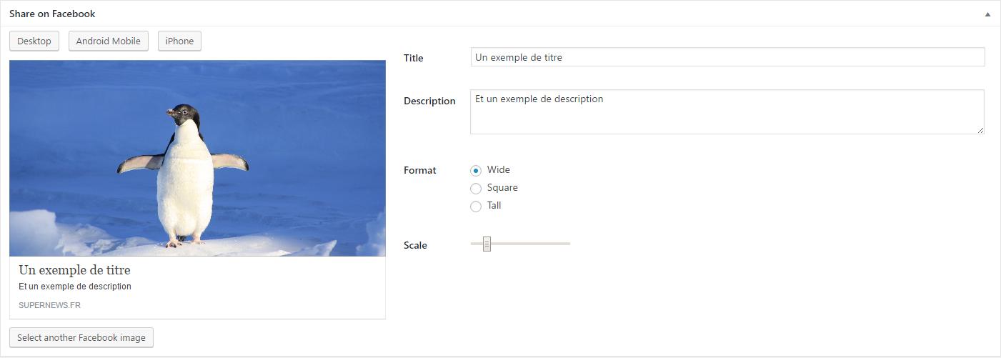 Capture d'écran de l'éditeur de métadonnées Facebook