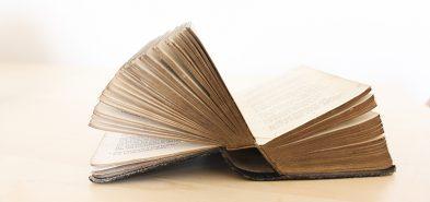 Gutenberg et l'avenir de WordPress