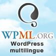 Bannière WPML